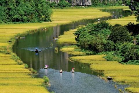 TOUR HOA LƯ - TAM CỐC - BÍCH ĐỘNG
