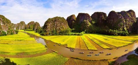 TOUR  HOA LƯ - TAM CỐC - CÚC PHƯƠNG