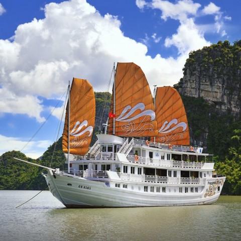 ComBo Du Thuyền Paradise + Khách Sạn Paradise Suite
