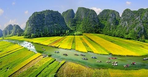 TOUR HOA LƯ TAM CỐC